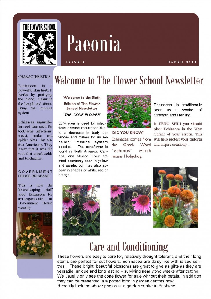 FLOWER SCHOOL NEWSLETTER March 2014