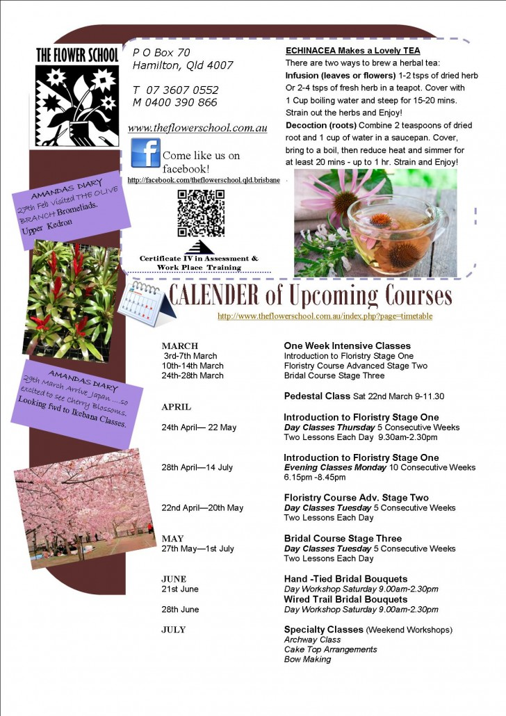 FLOWER SCHOOL NEWSLETTER March 2014 (Page 2)