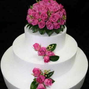 Cathy-cake-arr3-686x1030